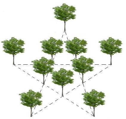 """Ответ к задаче-головоломке №2 """"Посадка деревьев"""""""