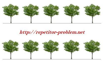 """Задача-головоломка №2 """"Посадка деревьев"""""""