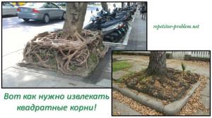 Математическая сказка о свойствах квадратного корня